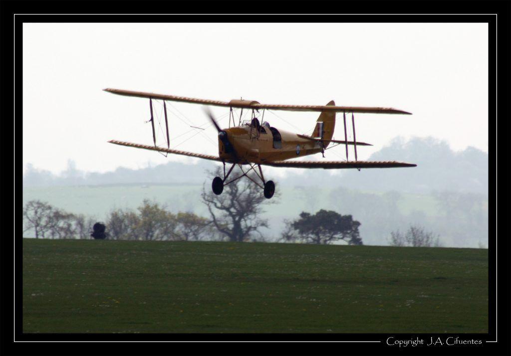 De Havilland DH-82A Tiger Moth II (G-ANRM)