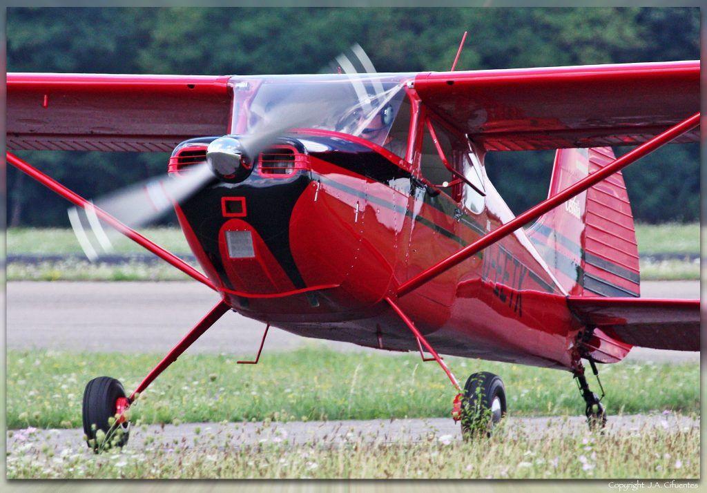 Cessna 170B (D-EETK).