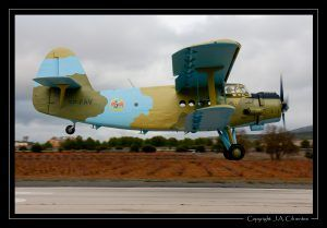 Antonov An-2 (SP-FAV)